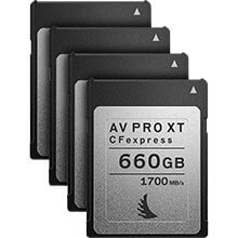 Angelbird AV Pro CFexpress XT 660GB | 4 Pack