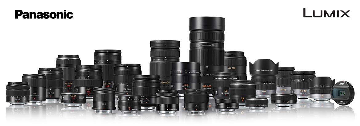 Primary and Zoom Lenses for Micro Four Thirds Cameras