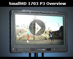 1703-P3 Overview: 17 inch monitor with P3 colour accuracy