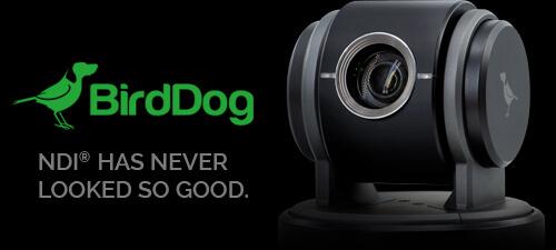 Why Buy into BirdDog PTZ Cameras?