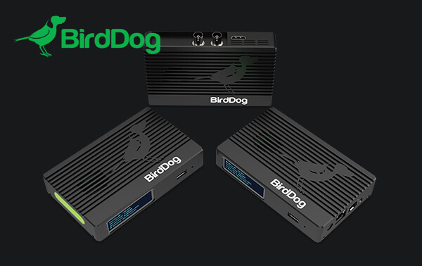Have You Considered BirdDog Converters?