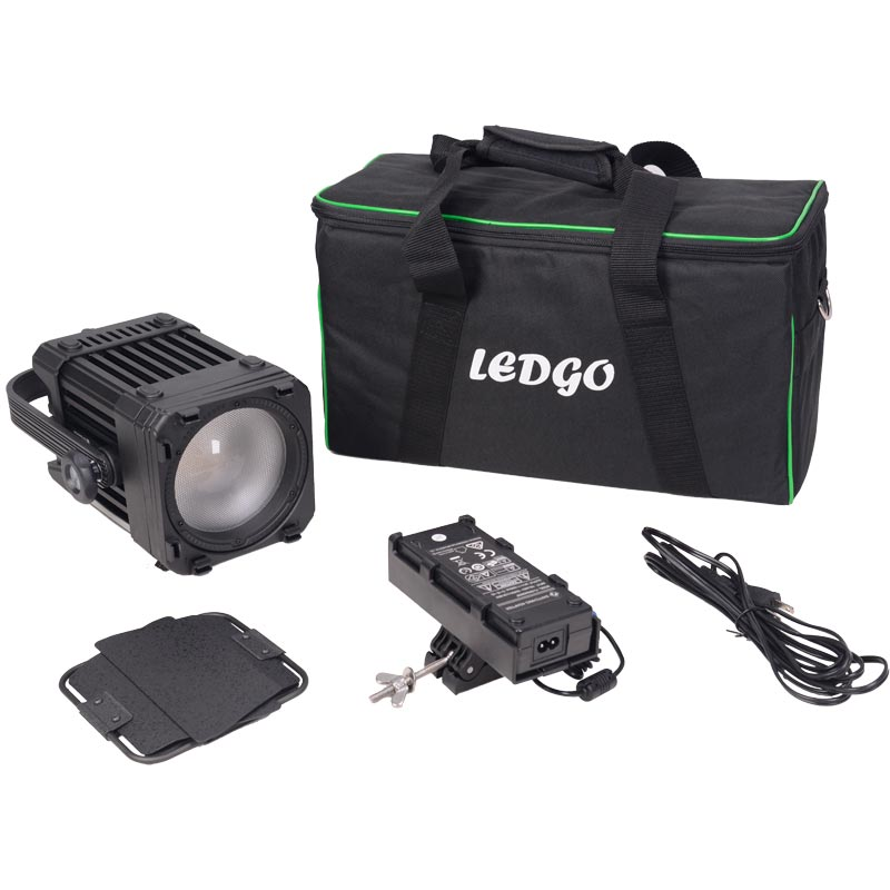LEDGO LG-D300